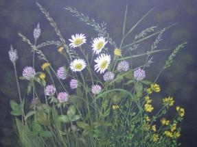 Sommergräser - Klee
